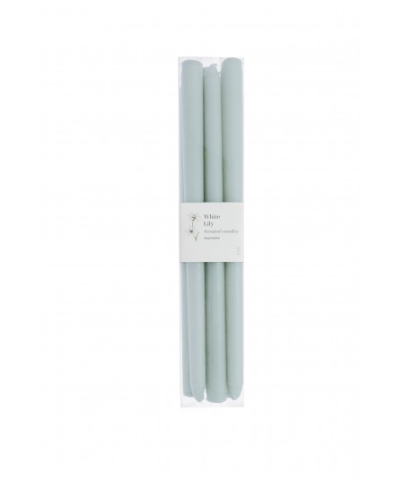 PACK 6 VELAS CILINDRO 30CM GR. AROMA WHITE LILY