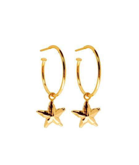 Argollas Estrella oro