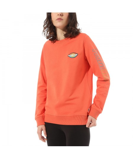 SUDADERA OVAL TEEN