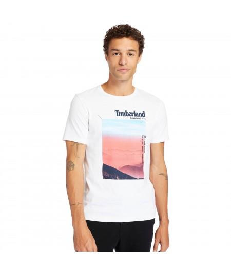TIMBERLAND GRAPHI TEE